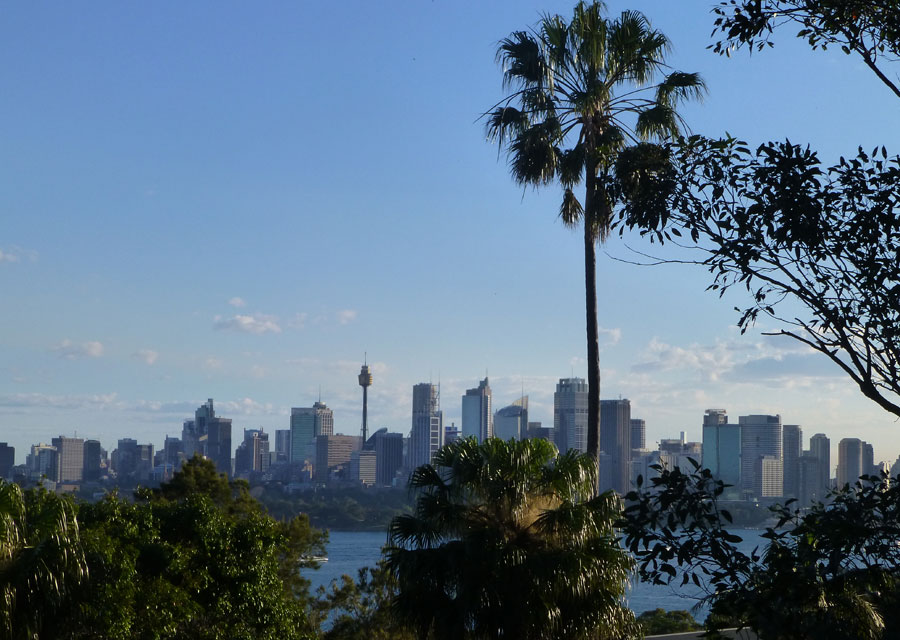 View of Sydney from the zoo