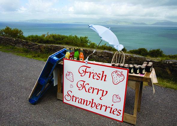 Kerry strawberries