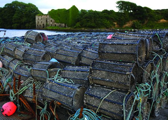 Lobster nets in Kinsale