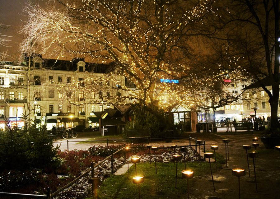 Malm travel guide christmas lights illuminate gustav adolf square in malm publicscrutiny Choice Image